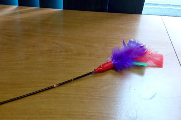 DIY Toys for Cats – Refurbished Feather Wand