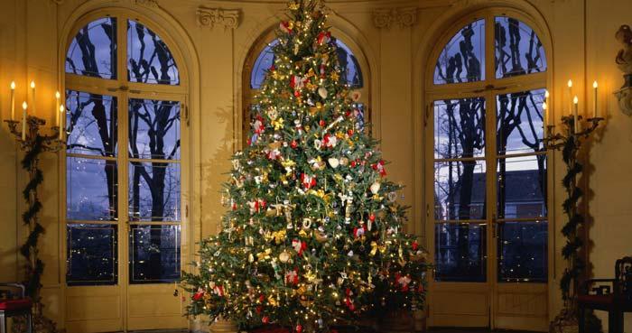 Rustic Christmas Design