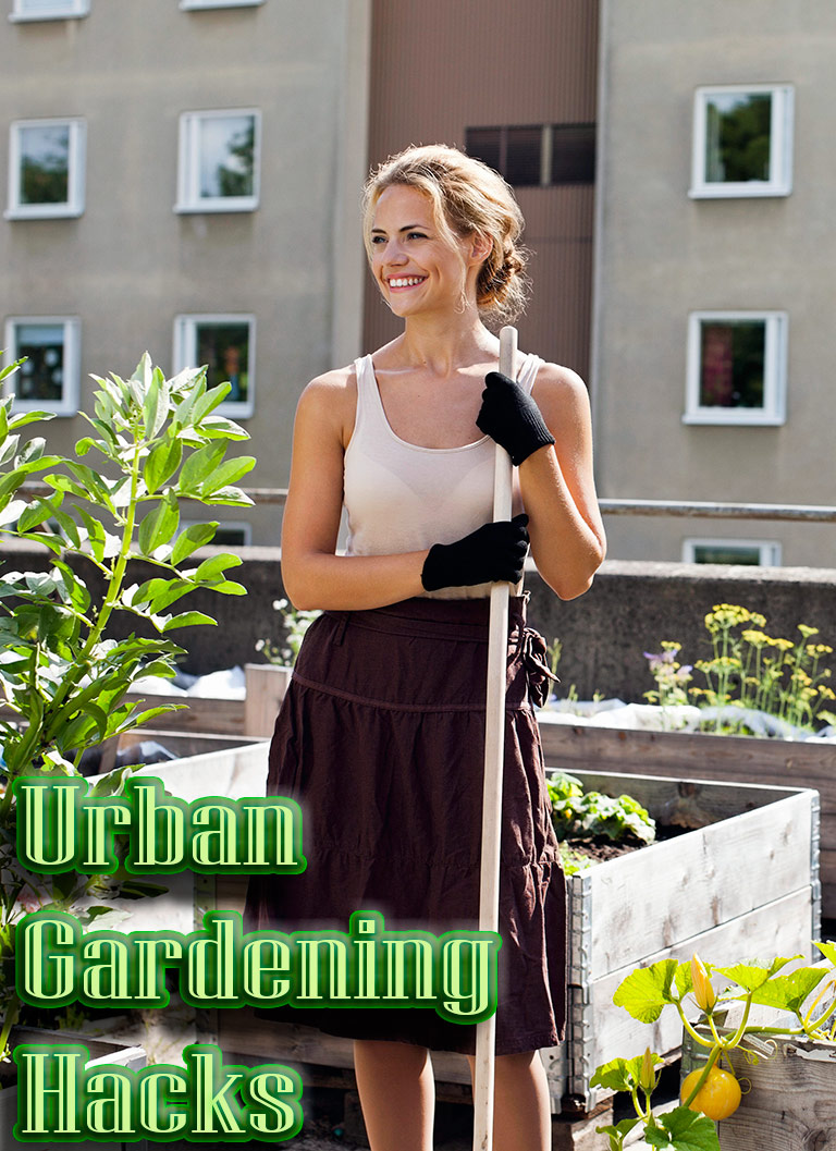 7 Creative Urban Gardening Hacks for Spring