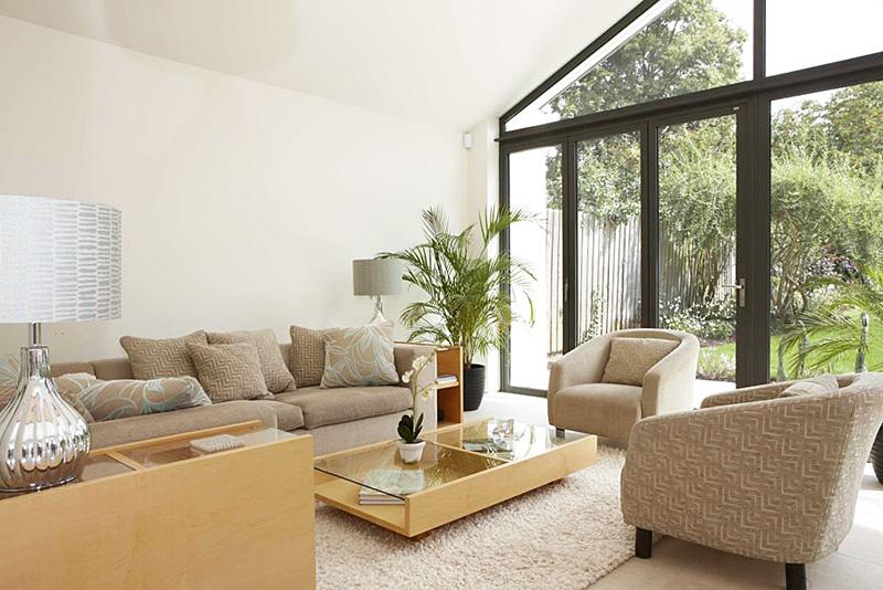 10 Living Room Plant Ideas