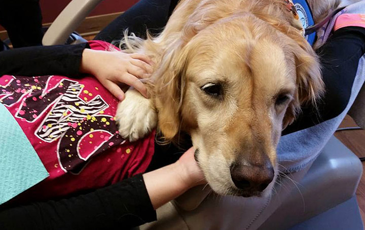 JoJo The Dog Comforts Kids At Dentist