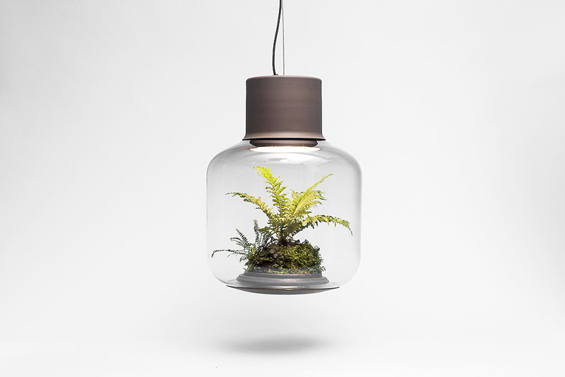 Terrarium-Lamps-by-Nui-Studio-8
