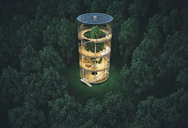 Tubular-Glass-House-Built-Around-Tree-03