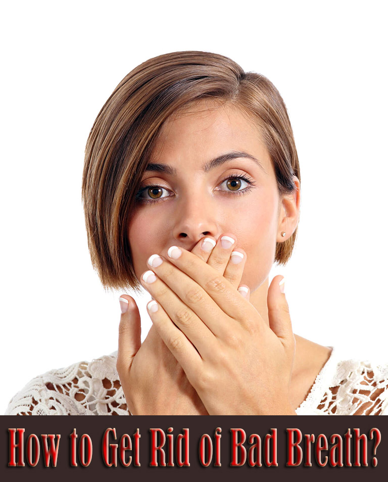 How To Get Rid Of Cats In Backyard Fleas Questions And Answers How To Get Rid Of Fleas On