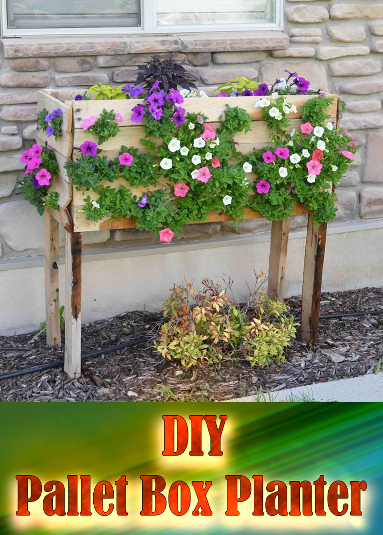 DIY – Pallet Box Planter