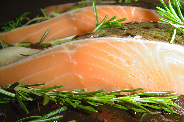 Frankenfish: Canada Approves GMO Salmon