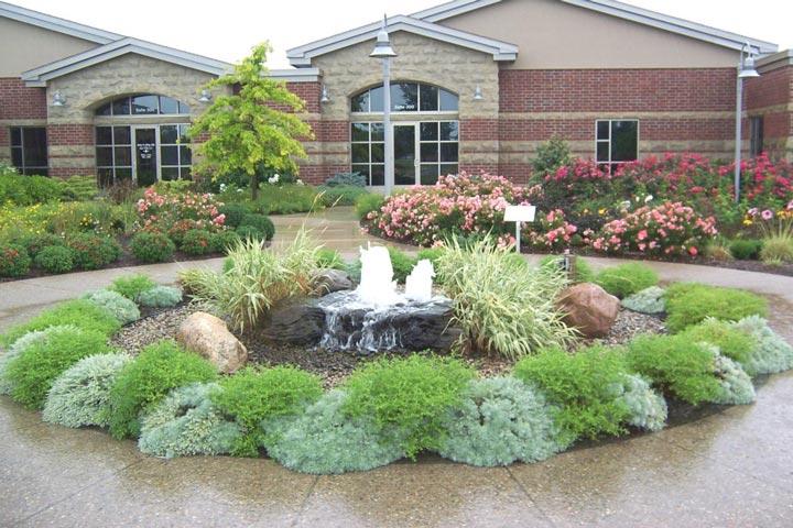 How to Plan a Low-Maintenance Landscape