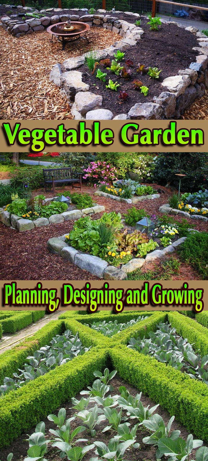 Planning, Designing and Growing