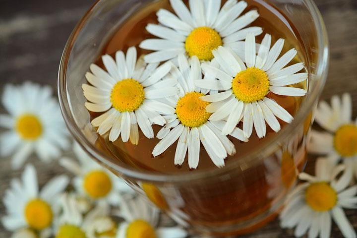 Skincare Benefits of Chamomile