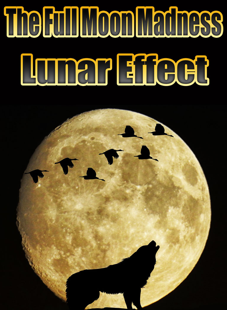 The Full Moon Madness - Lunar Effect