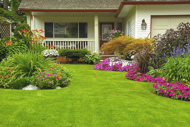 Colors in the Garden – Basics