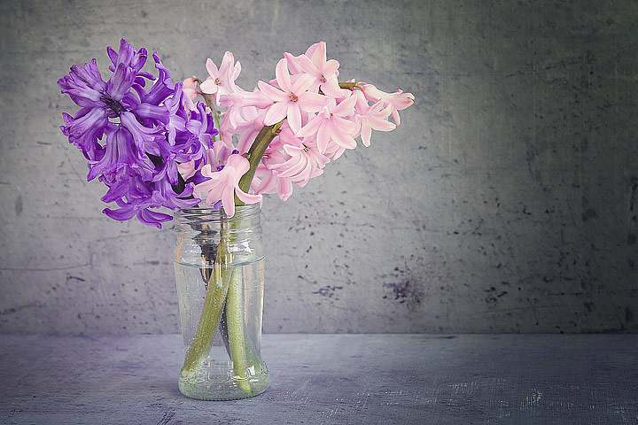 How to Keep Flowers Fresh Longer?