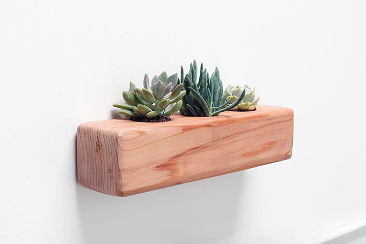 DIY - Succulent Planter
