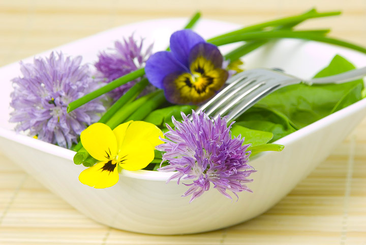 Edible Flowers – Flowers You can Eat