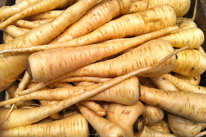 Parsnips - Growing Guide