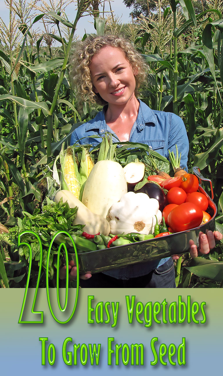 20 Easy Vegetables to Grow From Seed