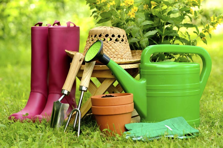 8 Tips for Gardeners in June