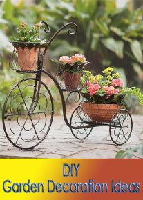 DIY Garden Decoration Ideas