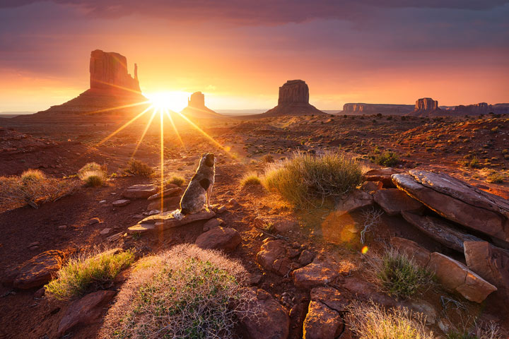 Photographer Julien Grondin Travels the World to Capture Sunrise