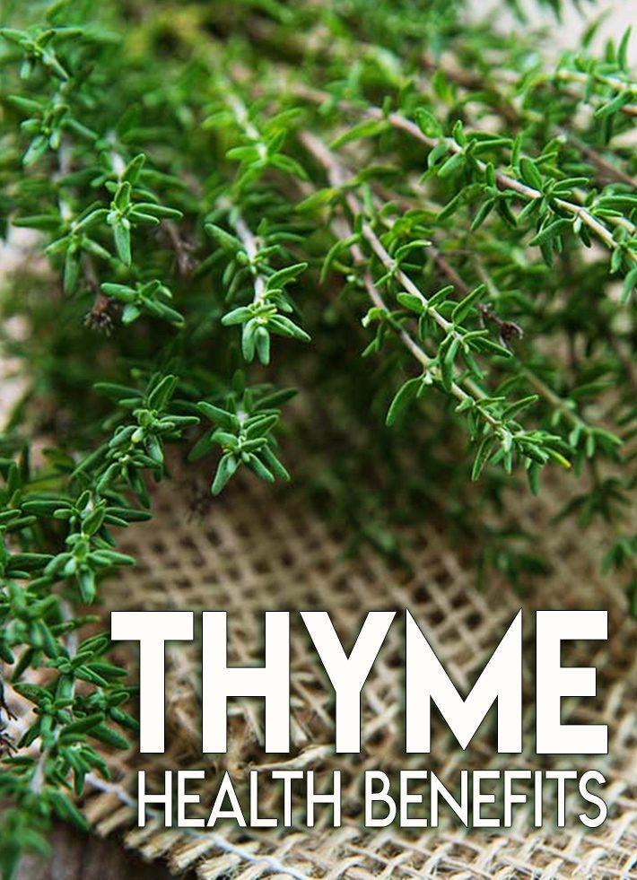 Thyme Health Benefits