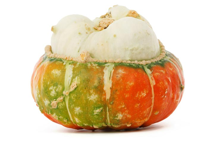 Growing Unusual Vegetables From Seed