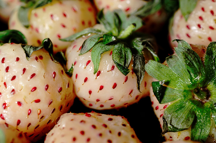 Pineberries - Growing Guide