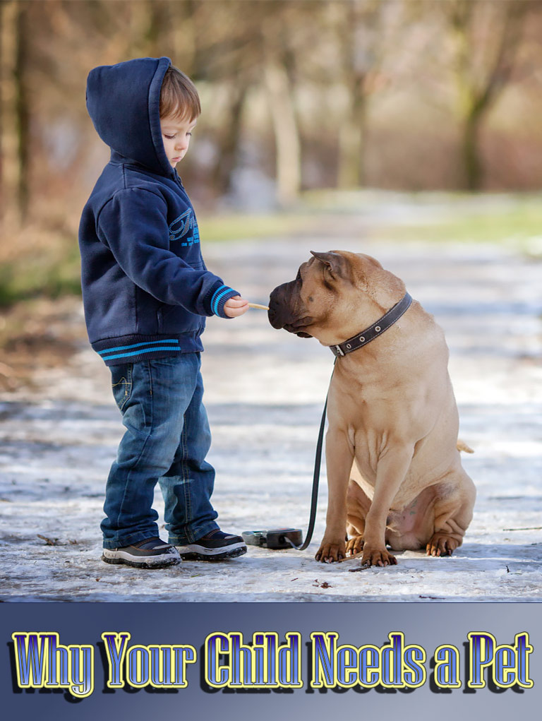 Surprising Reasons Why Your Child Needs a Pet