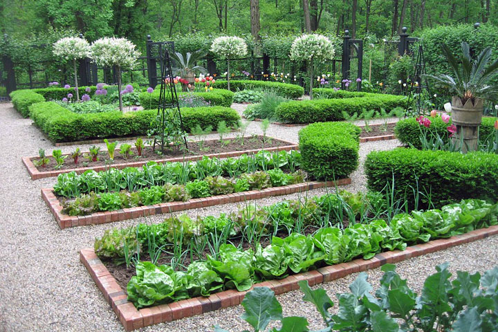 Quiet Corner:Ultimate Kitchen Garden Planner - Quiet Corner