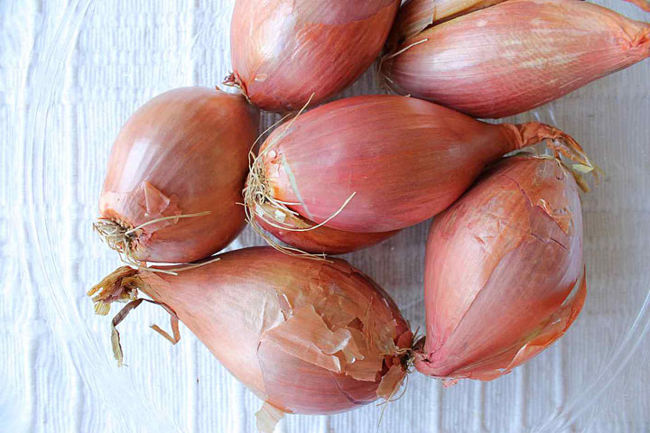 Shallots – Growing Guide