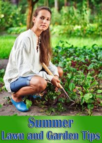 Lawn and Garden Tips for Summer