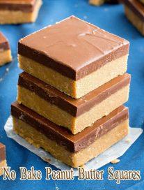 No Bake Peanut Butter Squares 2
