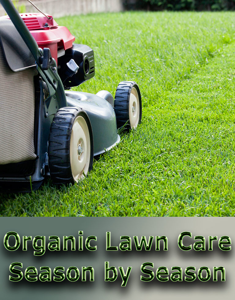 Organic Lawn Care: Season by Season