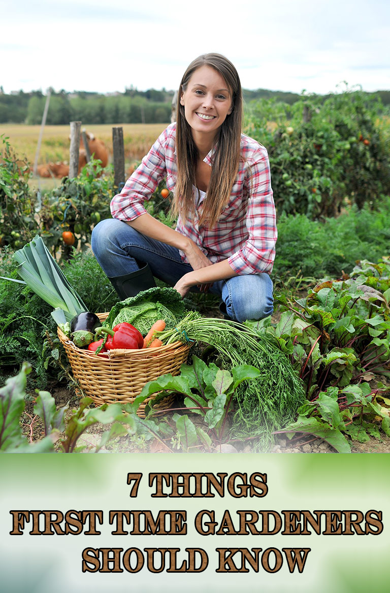 7 Things First Time Gardeners Should Know
