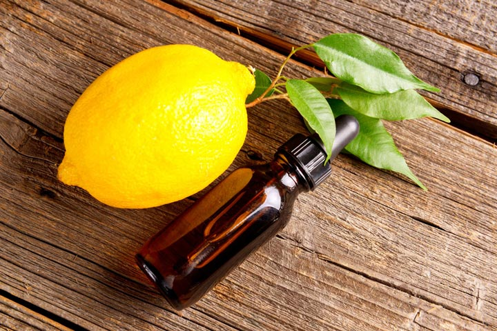 Are Citrus Fruits Poisonous to Cats And Dogs