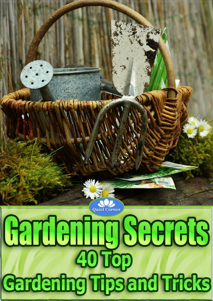 Gardening Secrets – 40 Top Gardening Tips and Tricks
