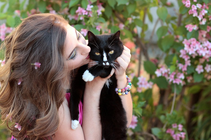 Happy International Cat Day: 10 Signs Your Cat Is Your Best Friend!