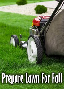 Prepare Lawn For Fall