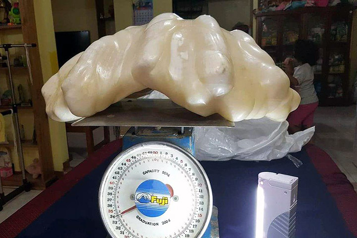 Fisherman Found Giant Pearl Worth $100million!