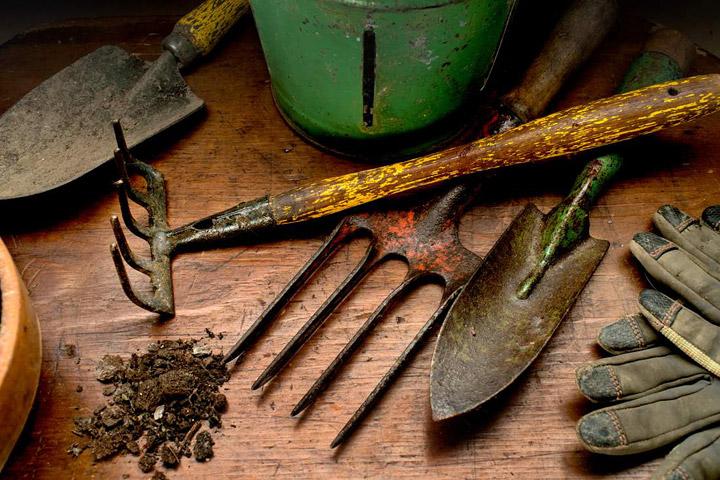 Gardening Tools Every Gardener Should Have