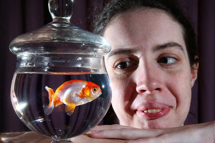 Brisbane woman pays $500 to save her $12 goldfish