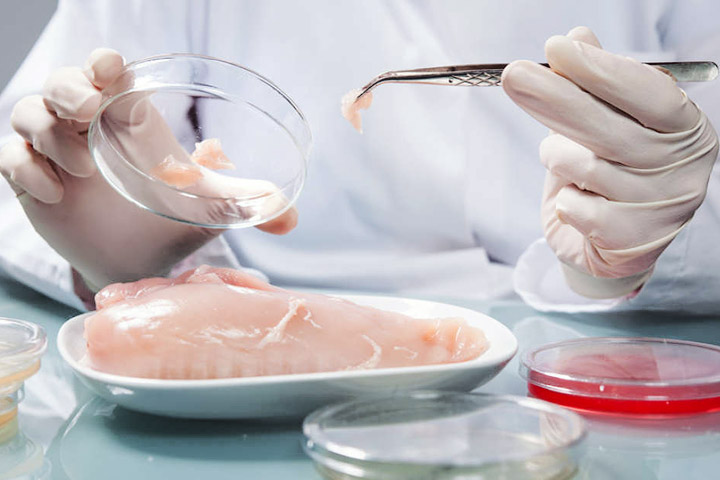 Animal Free SuperMeat: Lab-Cultured Meat