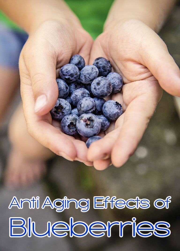 Anti Aging Effects of Blueberries