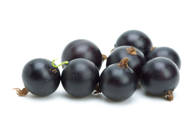 Black Currants Nutritional Facts - Vitamin C Bombs