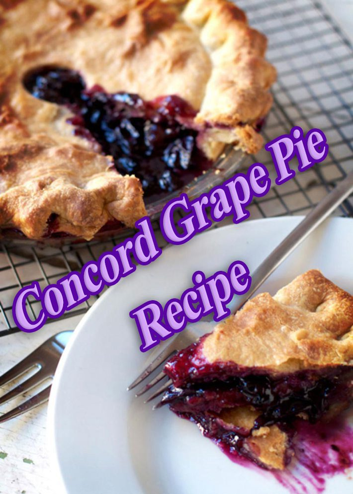 Concord Grape Pie Recipe