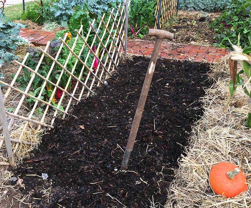 Gardening With Manure