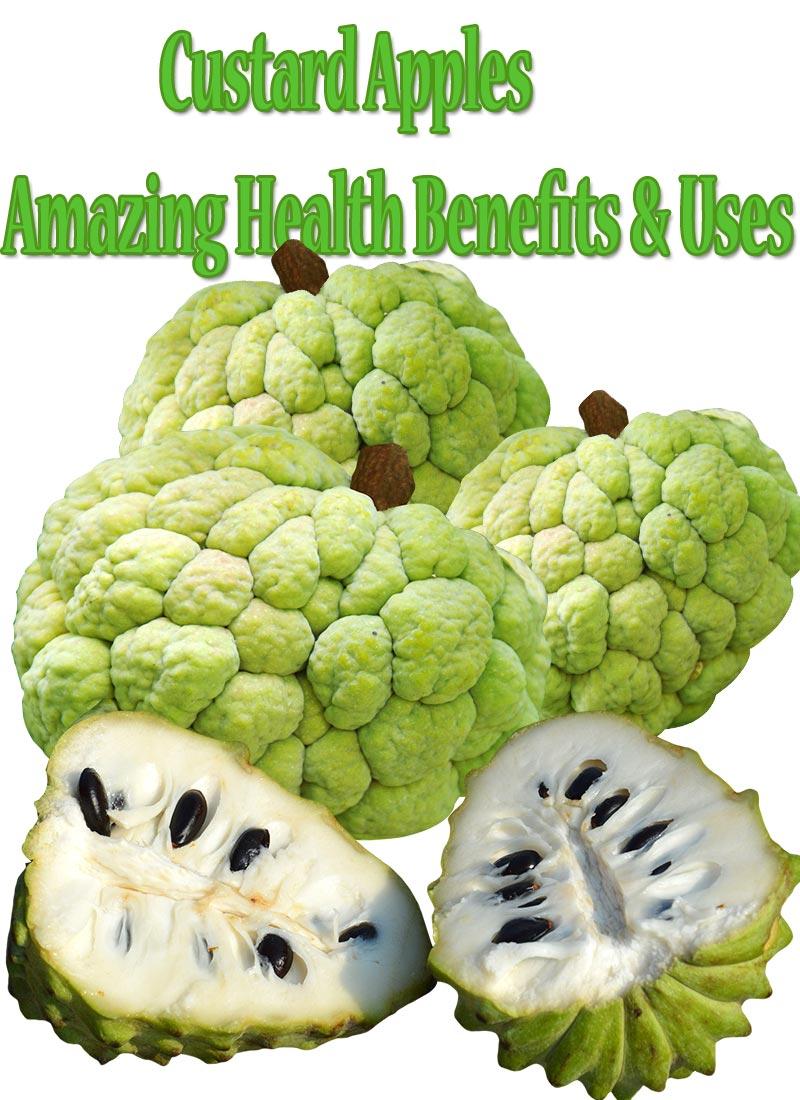 Custard Apples Amazing Health Benefits & Uses