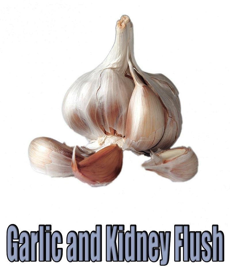 Garlic and Kidney Flush
