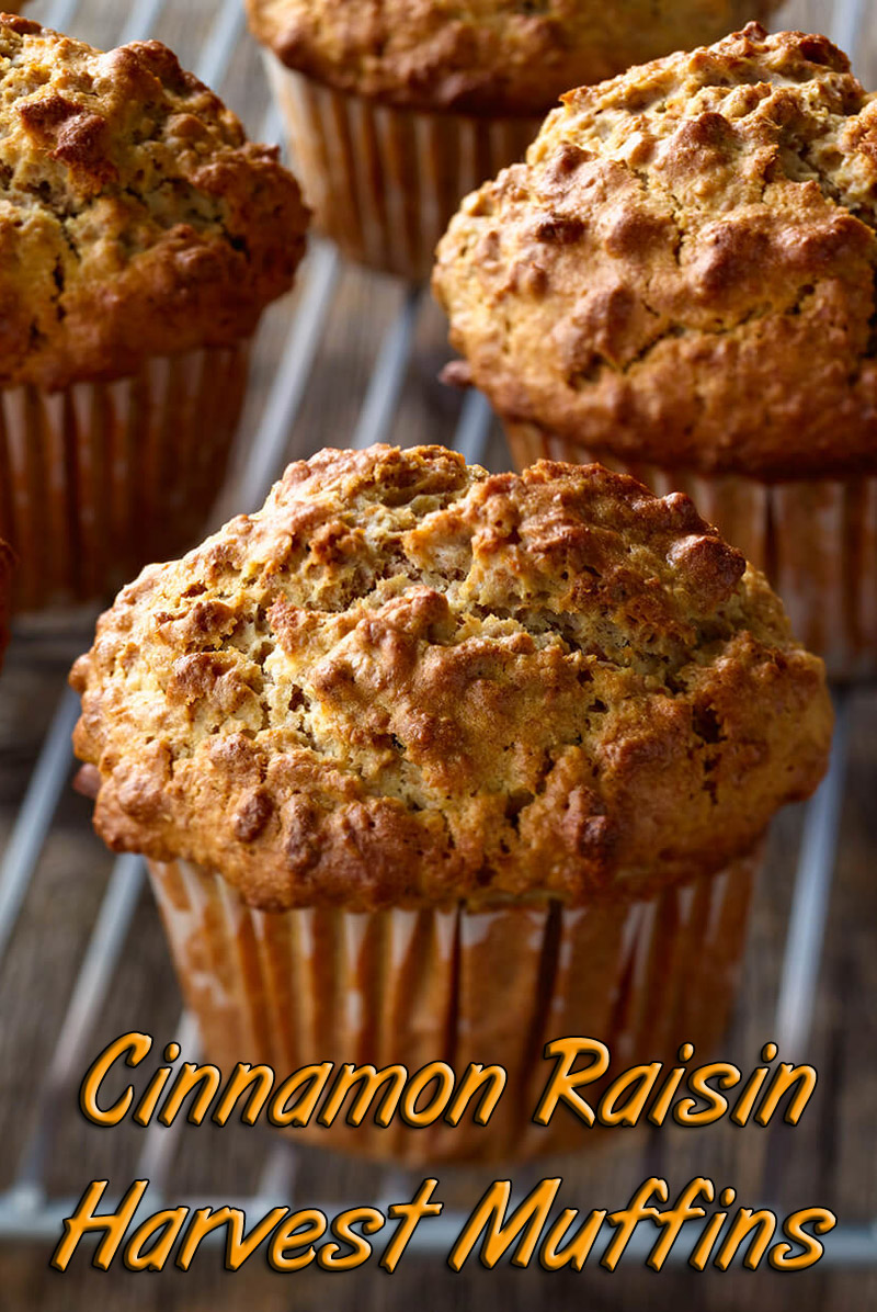 Cinnamon Raisin Harvest Muffins Recipe