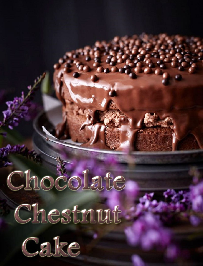 Dessert Recipes - Chocolate Chestnut Cake