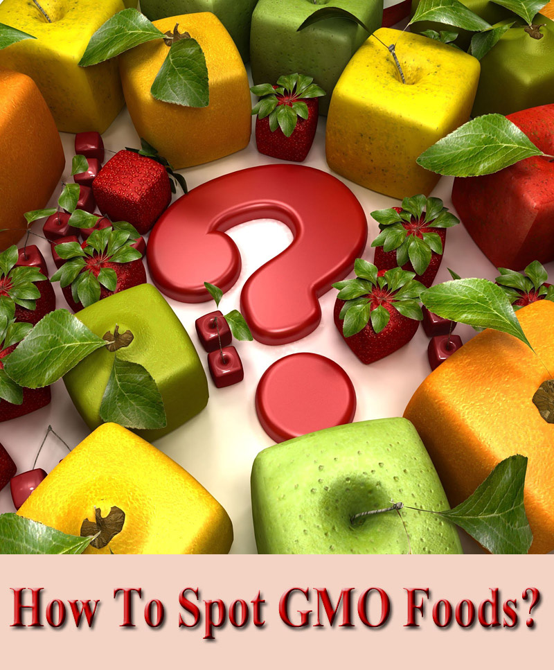 Learn How To Spot GMO Foods at the Grocery Store